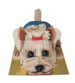Köpek Pastası-Yorkshire Terrier
